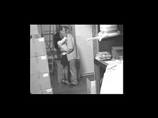 security webcam chronicles 5 scene 5