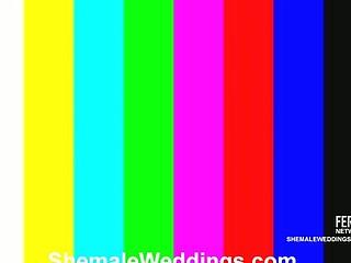 Laiza slutty shemale bride